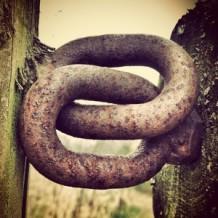 Link Symbol